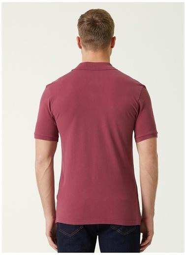 NetWork Network T-Shirt Gül Kurusu